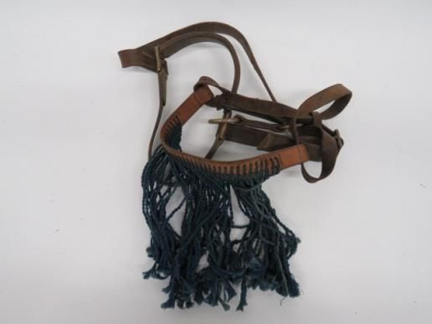 1938 Dated Horse / Mule Fly Fringe and Bridle