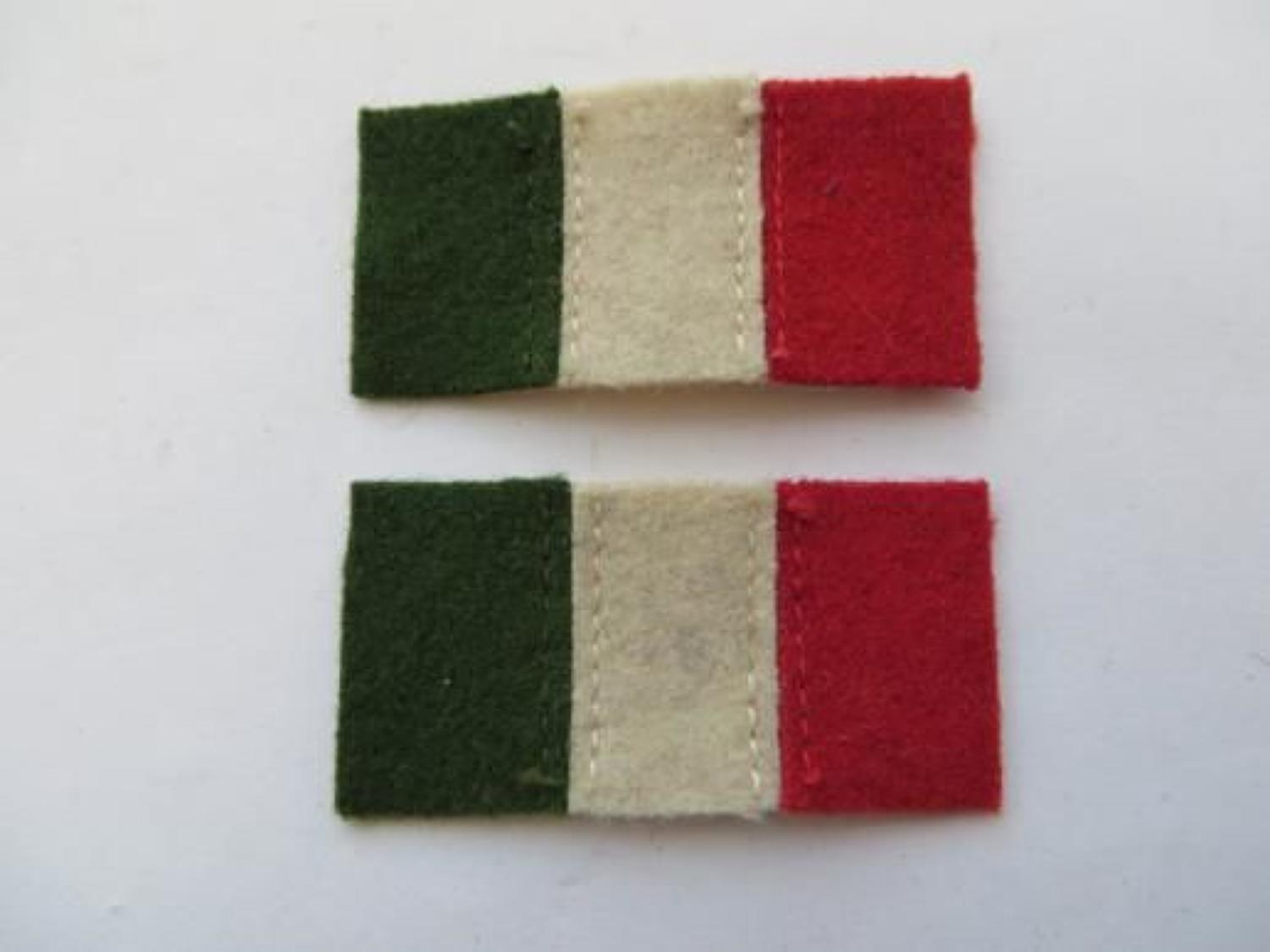 Pair of Regimental Formation Badges