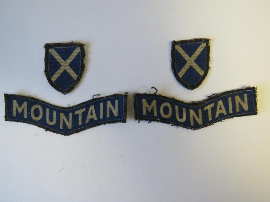 Pair of 52nd ( lowland ) Division Formation Badges