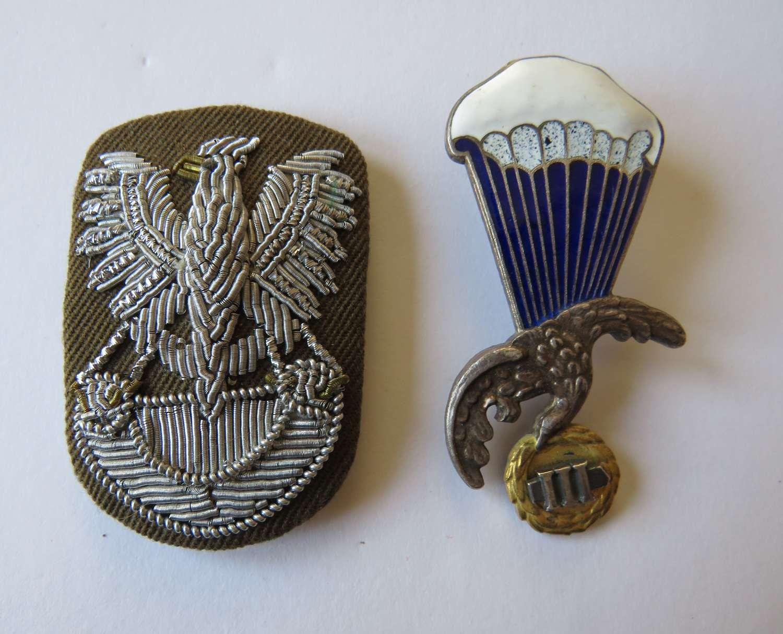 Two Post War Polish Badges